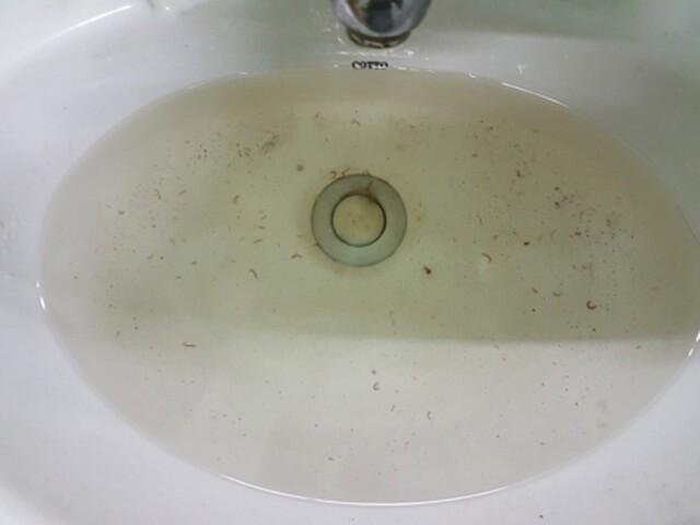 Nước máy bị ô nhiễm