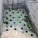 Bể sinh học hiếu khí trong hệ thống xử lý nước thải