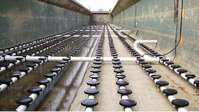 Hệ thống đĩa phân phối khí trong bể xử lý nước thải