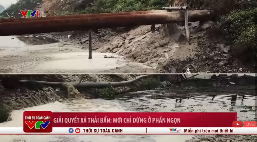 Nước thải xả giấy xả trực tiếp ra môi trường (nguồn VTV)