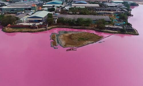 Hồ điều tiết lũ chuyển màu hồng tím