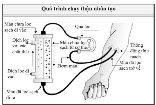 Chay Than Nhan Tao