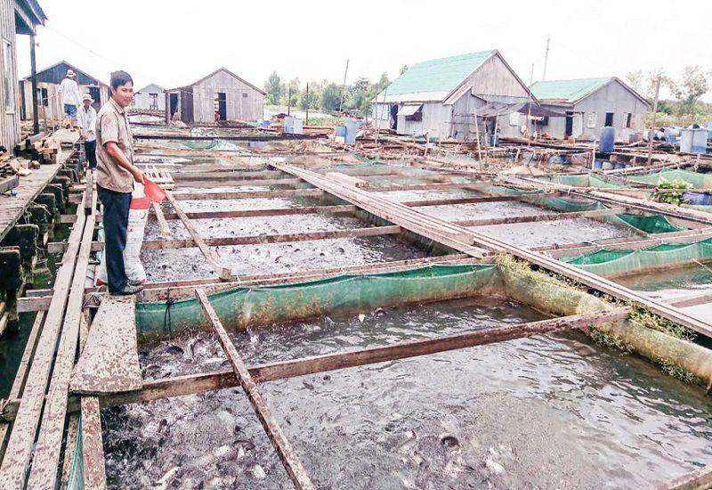 Quy chuẩn nước thải nuôi trồng thuỷ sản