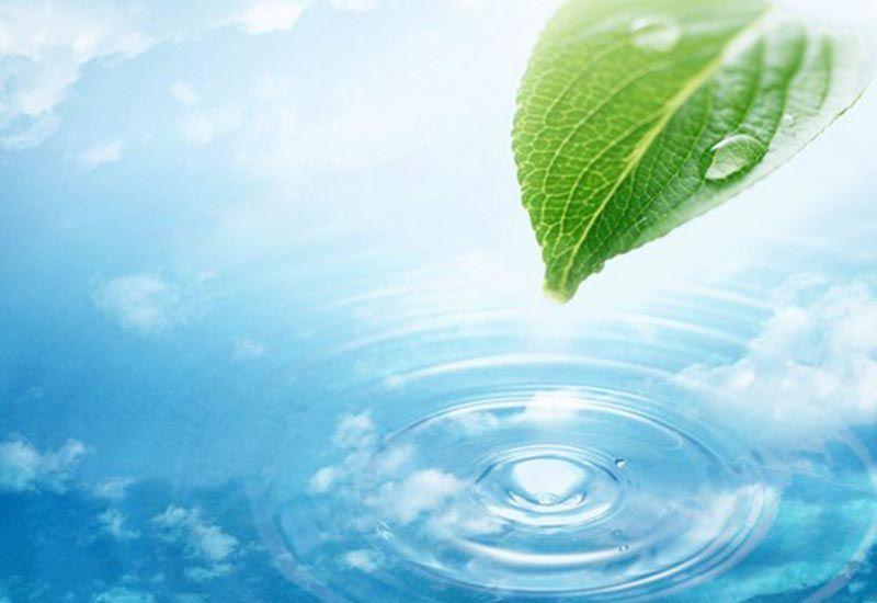 Nước tinh khiết là gì?